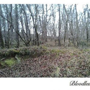 BLOODLESS-BLOODLESS-CD